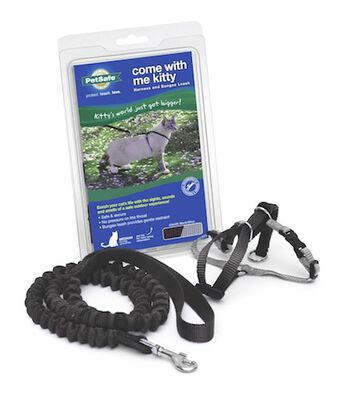 PetSafe Come With Me Kitty Harness  Bungee Cat Leash, Black/Silver, Medium