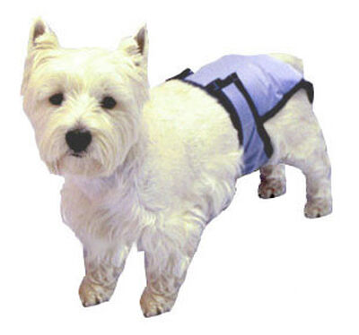 PoochPad PoochPants Reusable Dog Diaper, Small