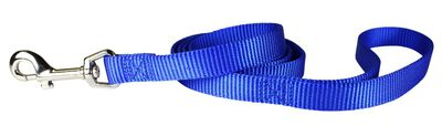 OmniPet One-Ply Nylon Dog Lead, Blue, 3/4-in x 4-ft