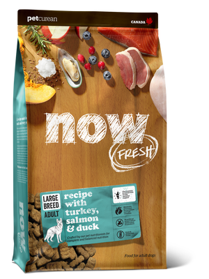 Now Fresh Grain Free Large Breed Adult Dog