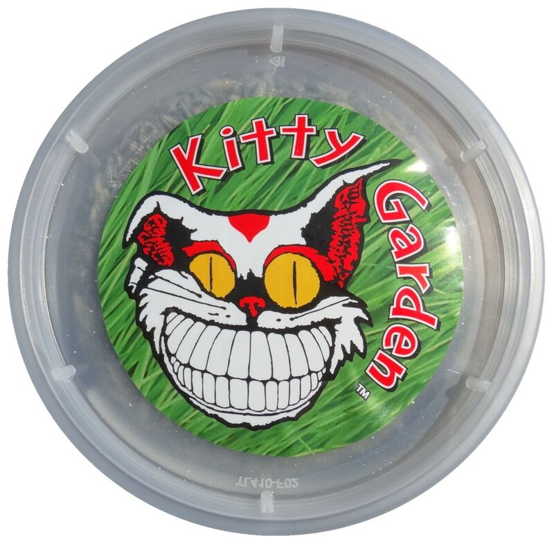 Alice's Kitty Garden Cat Grass