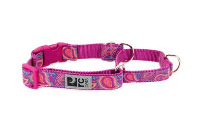 RC Pet Products Easy Clip Web Training Dog Collar, Bright Paisley, Small