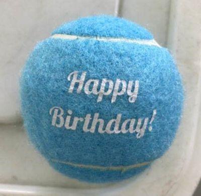 Mud Bay Happy Birthday Tennis Ball Dog Toy