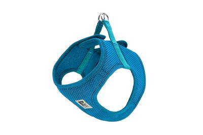 RC Pet ProductsStep-In Cirque Dog Harness, Teal, Small