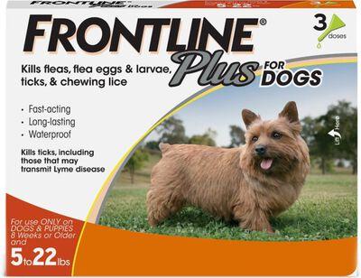 Frontline Plus Flea  Tick Spot Treatment for Dogs 5-22 lbs, 3-pack
