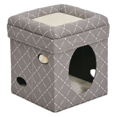 MidWest Curious Cat Cube, Geometric Mushroom