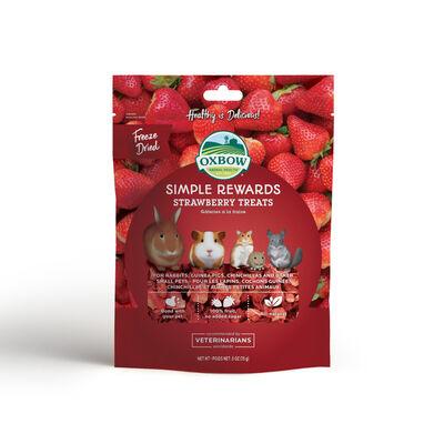 Oxbow Simple Rewards Strawberry Small Animal Treats, .5-oz