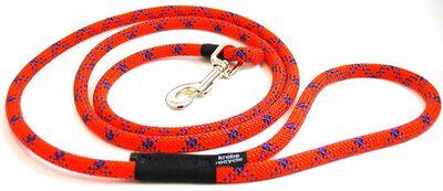 Krebs Recycle Reggie Dog Leash, Assorted Colors, 6-ft