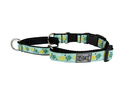 RC Pet Products Easy Clip Web Training Dog Collar, Pineapple Parade, Small